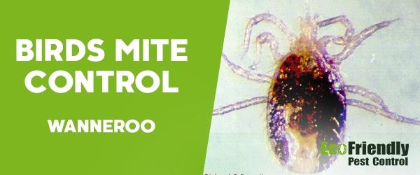 Bird Mite Control Wanneroo