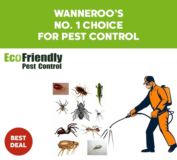 Pest Control Wanneroo
