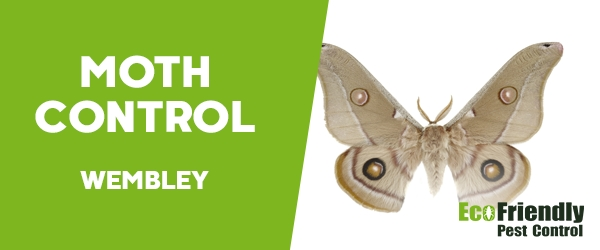 Moth Control Wembley