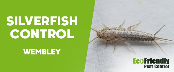 Silverfish Control Wembley