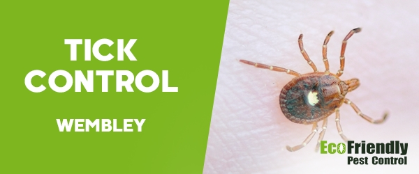 Ticks Control Wembley