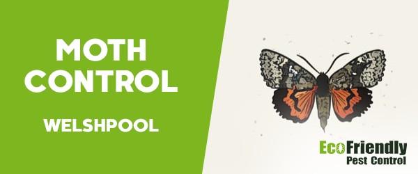 Moth Control Welshpool