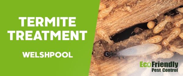 Termite Control Welshpool