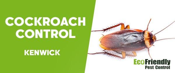 Cockroach Control  Kenwick