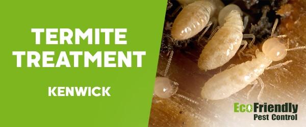 Termite Control  Kenwick