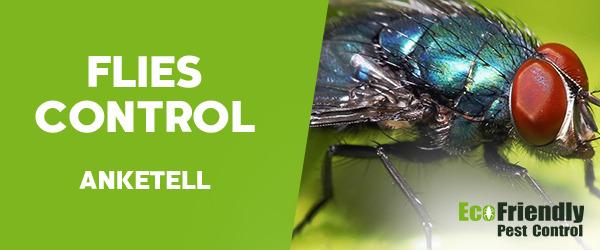 Flies Control Anketell