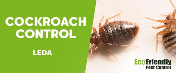 Cockroach Control Leda