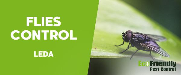 Flies Control Leda