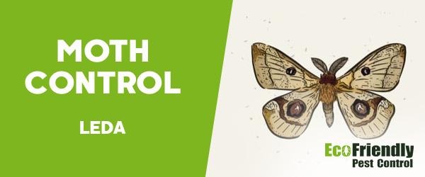 Moth Control Leda