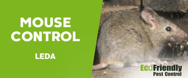Mouse Control Leda