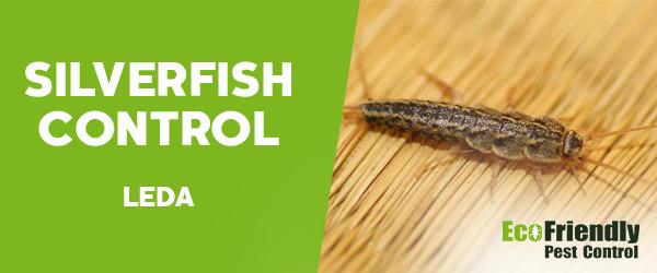 Silverfish Control Leda