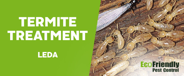 Termite Control Leda