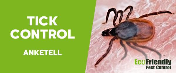 Ticks Control Anketell
