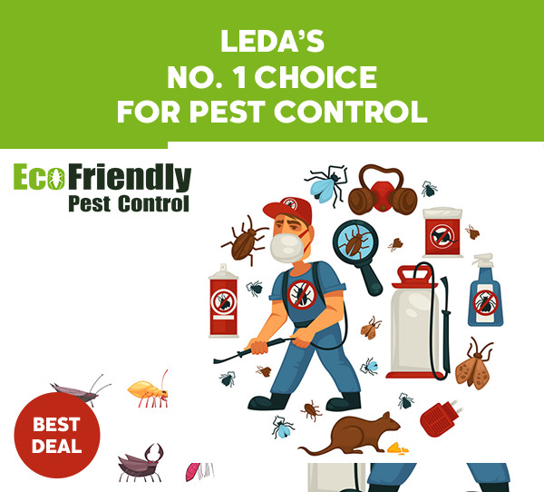 Pest Control Leda
