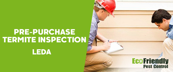 Pre-purchase Termite Inspection Leda