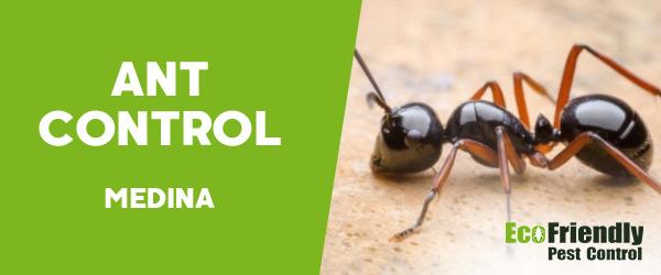 Ant Control Medina