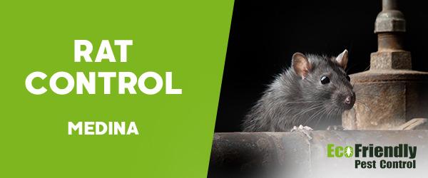 Pest Control Medina