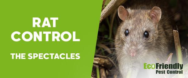 Rat Pest Control The Spectacles