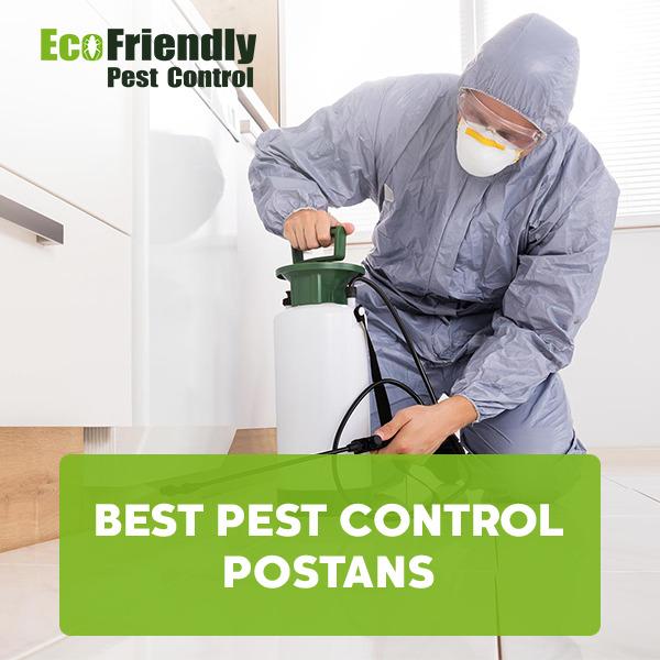 Best Pest Control  Postans