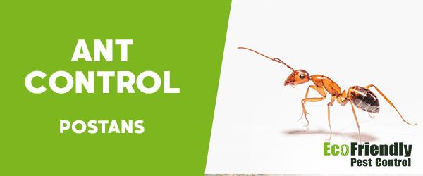 Ant Control  Postans