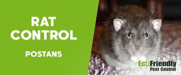Rat Pest Control  Postans