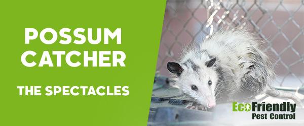 Possum Catcher The Spectacles
