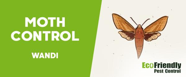 Moth Control Wandi