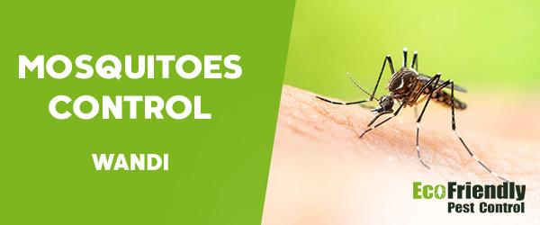 Mosquitoes Control Wandi