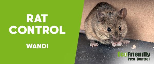 Rat Pest Control Wandi