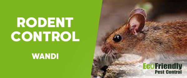 Rodent Treatment Wandi