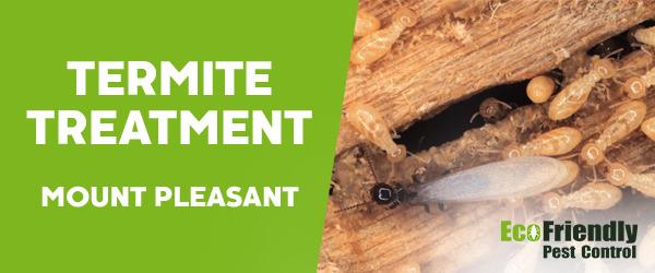 Termite Control Mount Pleasant