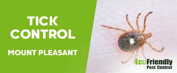 Ticks Control Mount Pleasant