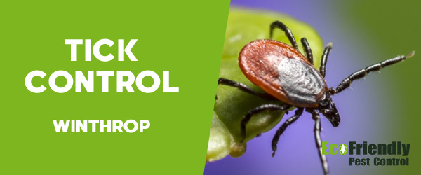 Ticks Control  Winthrop