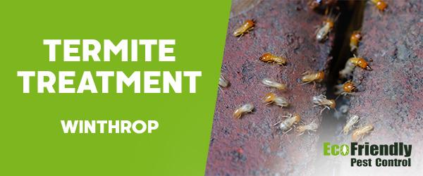 Termite Control  Winthrop