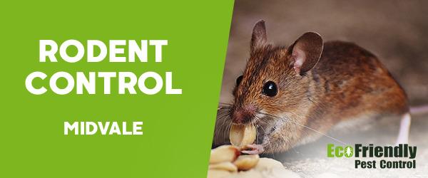 Rodent Treatment Midvale
