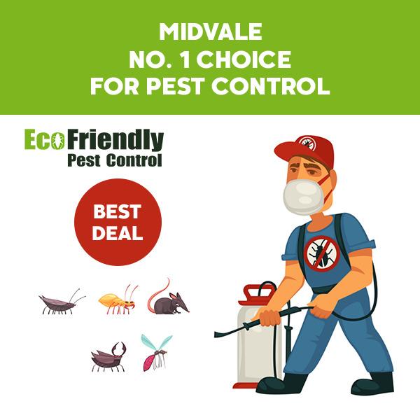 Pest Control Midvale