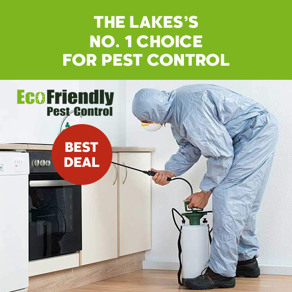 Pest Control The Lakes