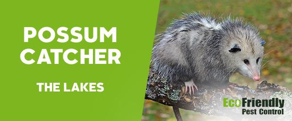 Possum Catcher  The Lakes