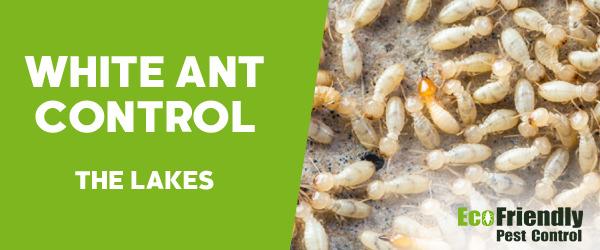 White Ant Control  The Lakes