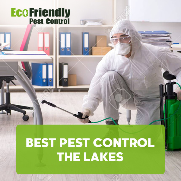 Best Pest Control  The Lakes