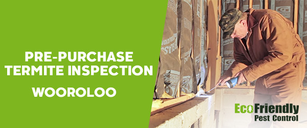 Pre-purchase Termite Inspection Wooroloo
