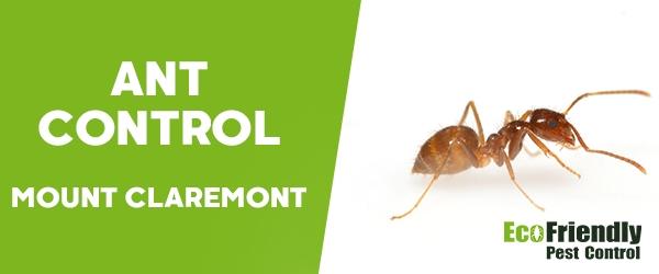 Ant Control Mount Claremont