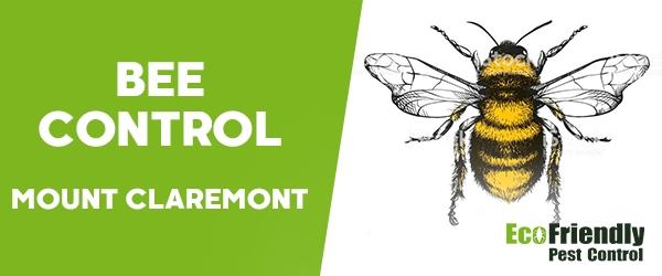 Bee Control Mount Claremont