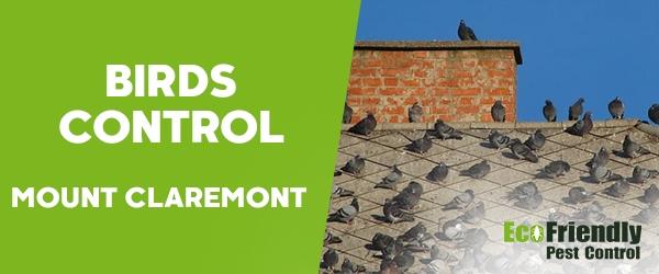 Birds Control Mount Claremont