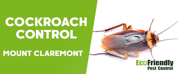 Cockroach Control Mount Claremont
