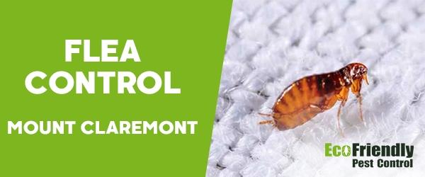 Fleas Control Mount Claremont