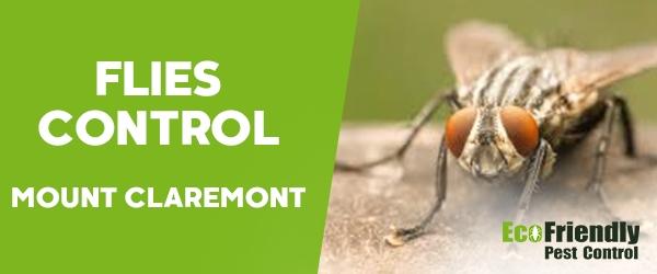 Flies Control Mount Claremont