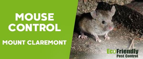 Mouse Control Mount Claremont