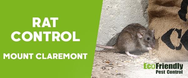 Rat Pest Control Mount Claremont