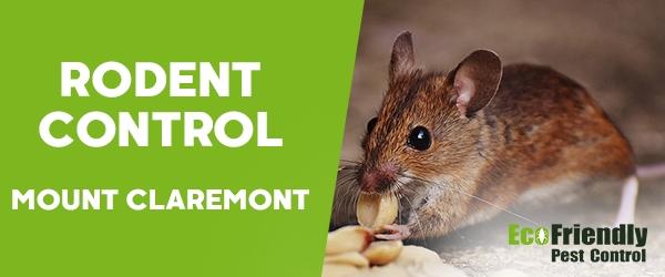Rodent Treatment Mount Claremont